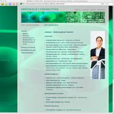 Website Screenshot 3 - Kunde - Grünwald Consulting